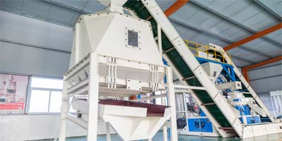 Asia biggest 20t/h biomass straw wood pellet production line(图8)