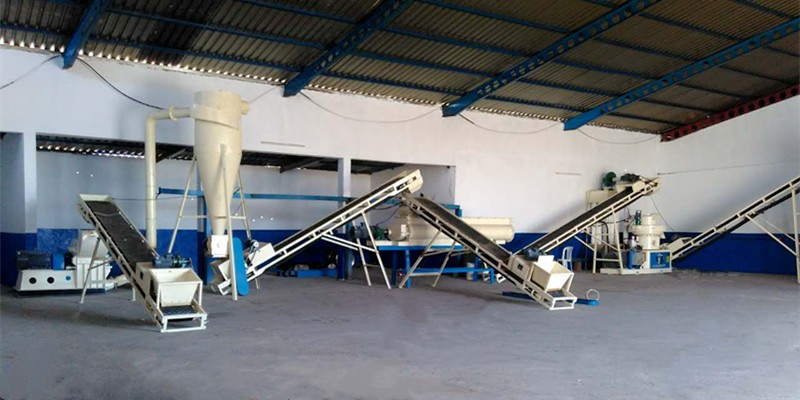 1-1.5 T/H wood pellet production line in Tunisia (图1)