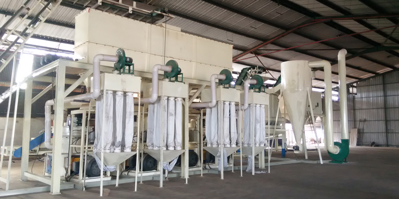 6 T/H wood pellet production line in Malaysia (图2)